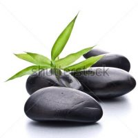 stock-photo-zen-pebbles-stone-spa-and-healthcare-concept-103903052